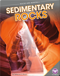 Rocks and Minerals: Sedimentary Rocks