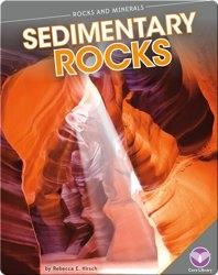 Rocks and Minerals: Sedimentary Rocks