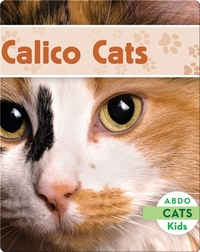 Calico Cats