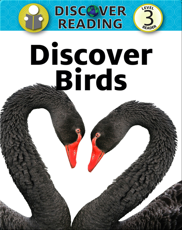 Discover Birds: Level 3 Reader
