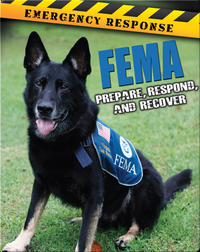 FEMA: Prepare, Respond, And Recover