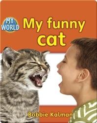 My Funny Cat