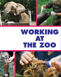 Working at the Zoo