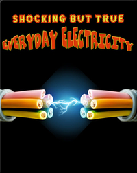 Shocking But True Everyday Electricity