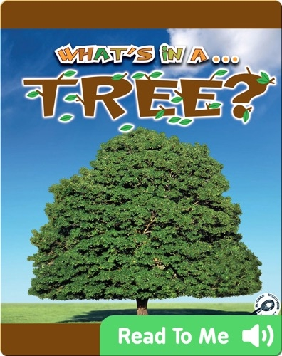 What's In A... Tree?