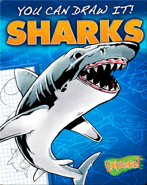 You Can Draw It! Sharks