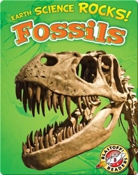 Earth Science Rocks! Fossils