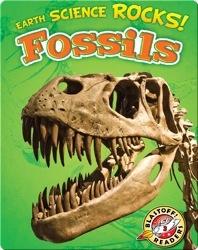 Earth Science Rocks! Fossils
