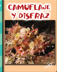 Camuflaje y disfraz (Camouflage and Disguise)