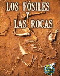 Los fósiles y las rocas