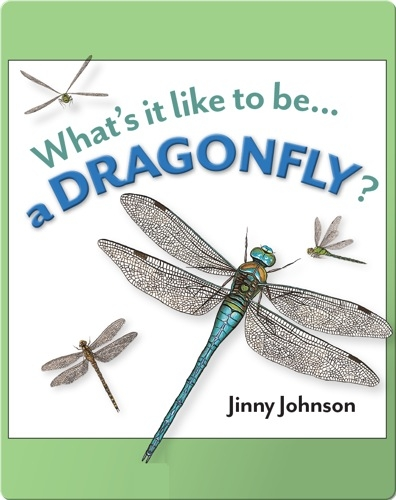 What's It Like To Be A Dragonfly?