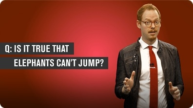 Can Elephants Jump?