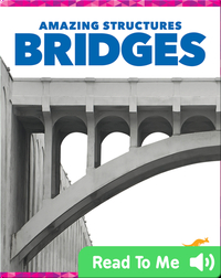 Amazing Structures: Bridges