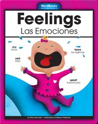 Feelings/Las Emociones