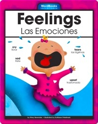 Feelings/Las Emociones