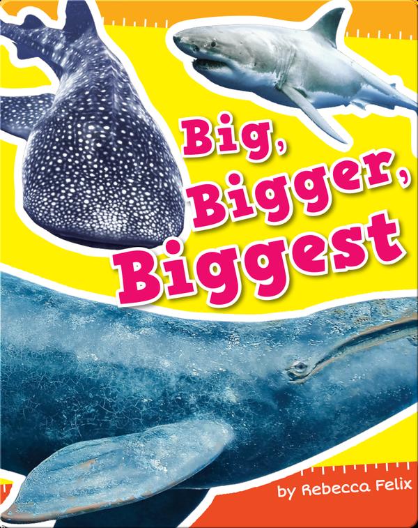 Big, Bigger, Biggest
