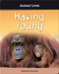 Having Young