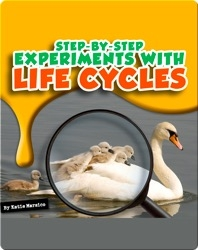 Step-by-Step Experiments With Life Cycles