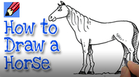 How to Draw a Horse Real Easy