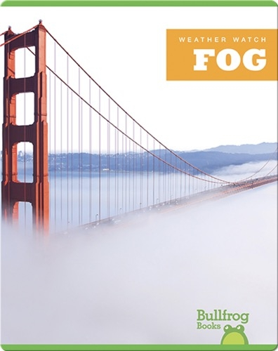 Weather Watch: Fog