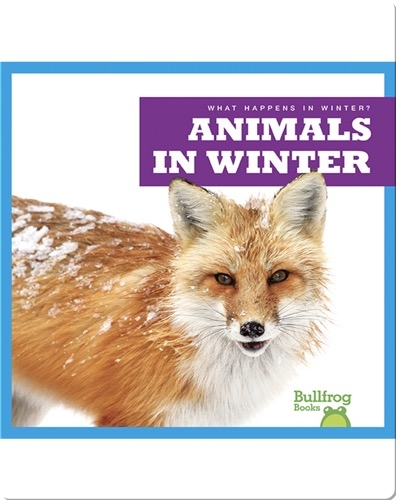 What Happens In Winter? Animals In Winter