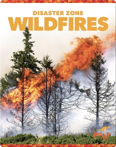 Disaster Zone: Wildfires