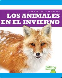 Los Animales en el Invierno (¿Qué Pasa en el Invierno?)