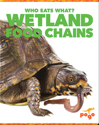 Who Eats What? Wetland Food Chains