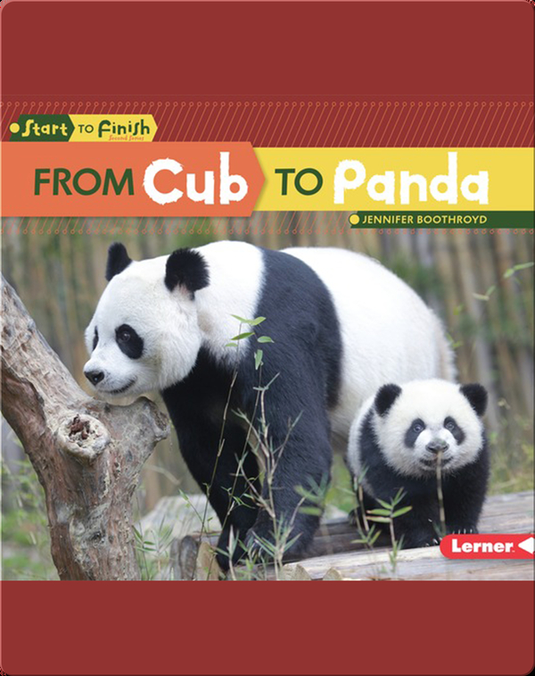 From Cub to Panda