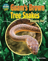Guam's Brown Tree Snakes: Hanging Out