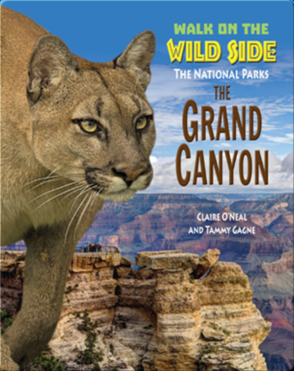Walk on the Wild Side: The Grand Canyon