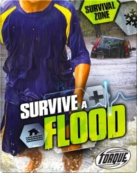Survive A Flood