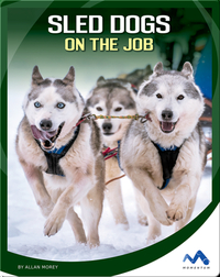 Sled Dogs on the Job