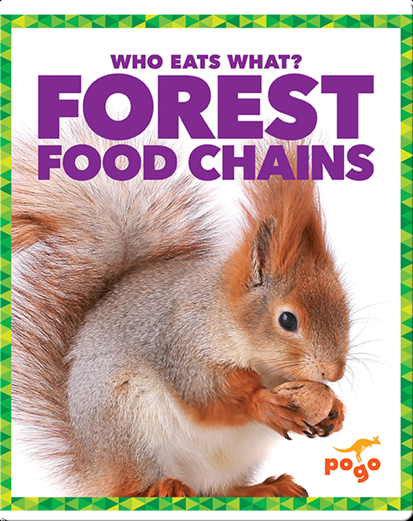 Who Eats What? Forest Food Chains