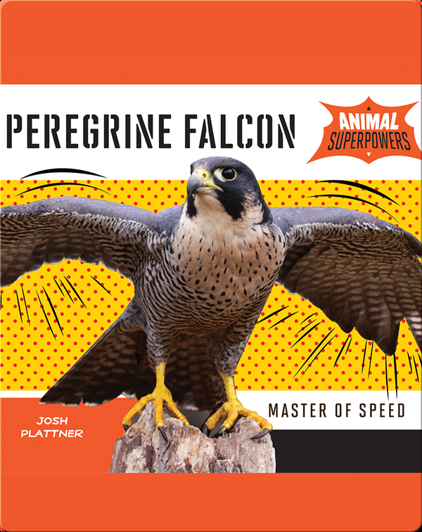 Peregrine Falcon: Master of Speed