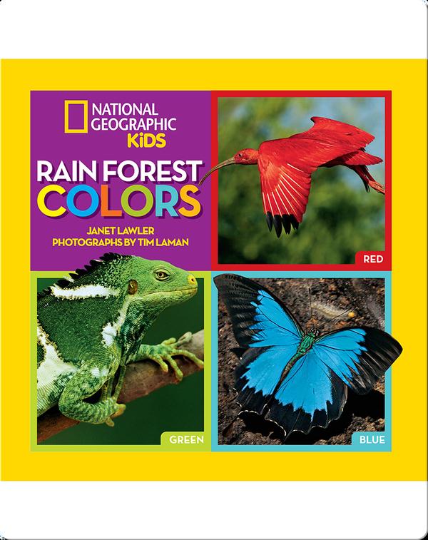Rain Forest Colors