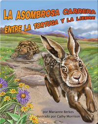 Iguanas Ranas Back At Ya Children S Book By Catalina Kühne With Illustrations By Juan Gedovius Discover Children S Books Audiobooks Videos More On Epic