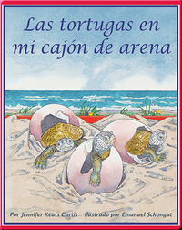 Las tortugas en mi cajón de arena