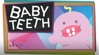 SciShow Kids: Why Do We Have Baby Teeth?