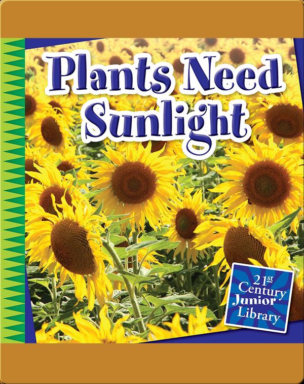 Plants Need Sunlight