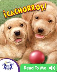 ¡Cachorros!