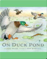 On Duck Pond