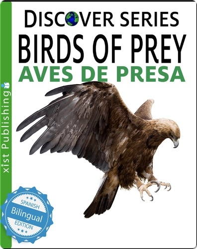 Birds of Prey / Aves de Presa