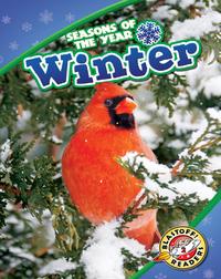 Seasons of the Year: Winter