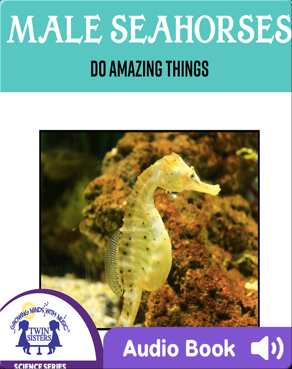 Male Sea Horses Do Amazing Things