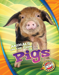 Animals on the Farm: Pigs