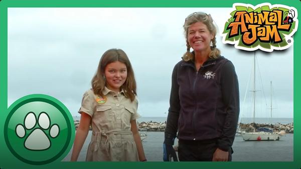 Exploring the Ocean with Tierney!