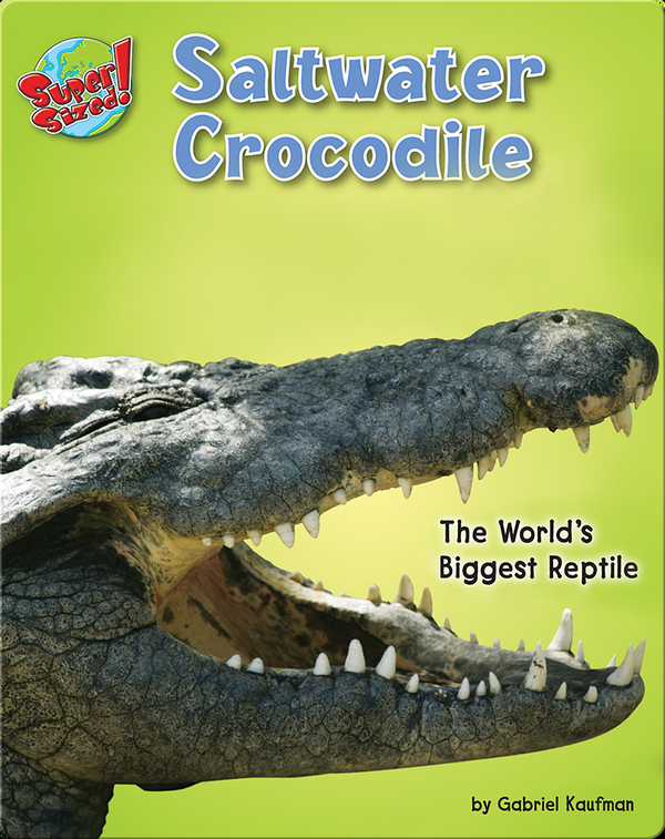 Saltwater Crocodile: The World's Biggest Reptile
