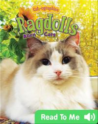 Ragdolls: Alien Cats