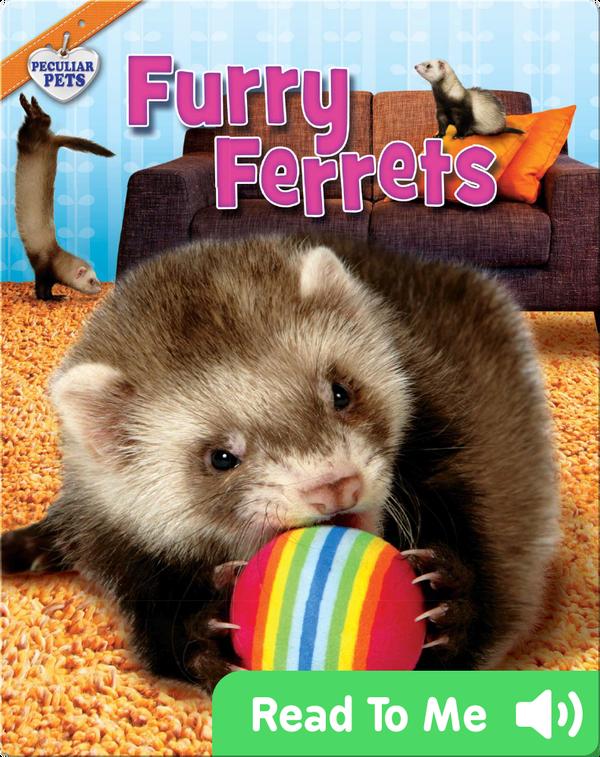 Furry Ferrets